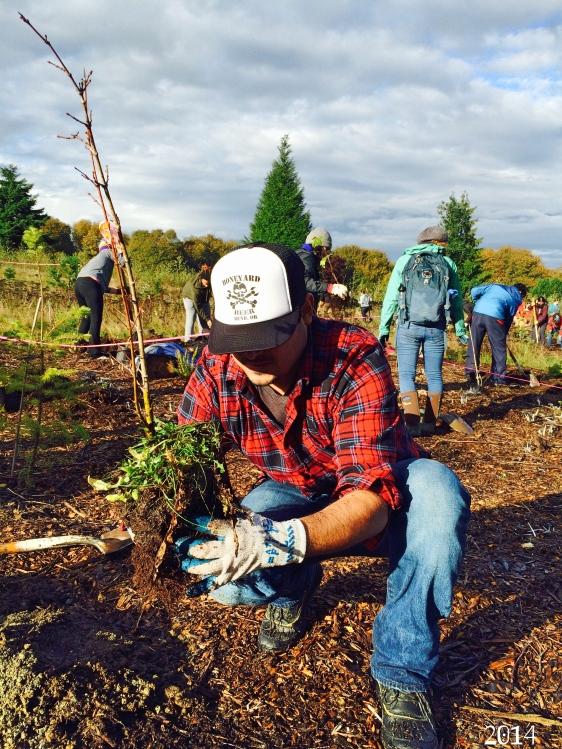 Beto plantando arboles2