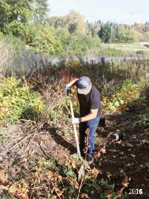Beto plantando arboles1